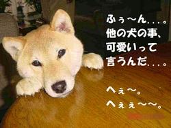 090115コータロー.jpg