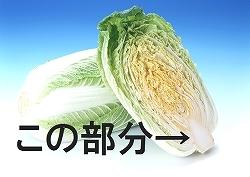 白菜の芯_完成品.jpg